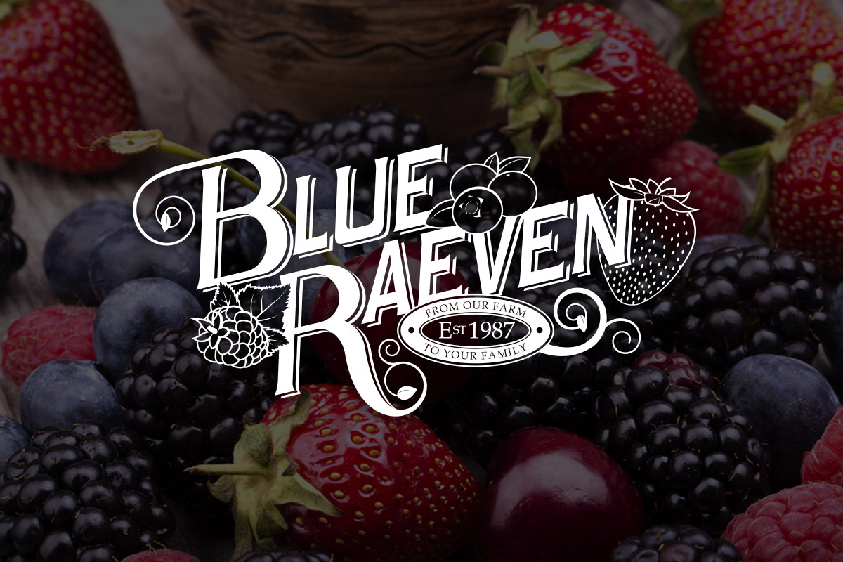 Blue Raeven Logo Development
